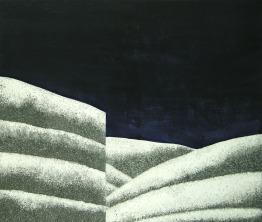 vertical, 2009, 81x100cm