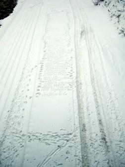 60 (śnieg), 2010, 60 nieużytych tytułów na obrazy wypisanych na śniegu