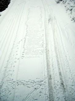 60 (snow), 2010, 60 unused titles for paintings