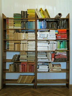 the order, 2010, books arranged by the color