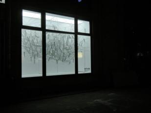 ivy, 2011, Witryna, Warszawa